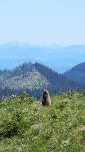 Cascade Mountains in Washington State