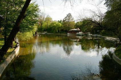 Cismigiu Park: Oase der Ruhe