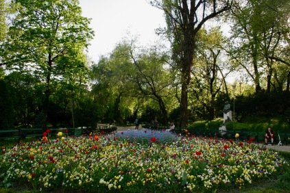 Cismigiu Park: Blumenmeer inmitten der Stadt