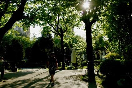 Cismigiu Park: ältester Park der Stadt