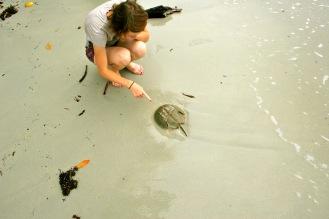 Koh Chang: Meeresbegegnung