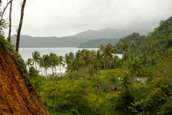 Koh Chang: wilde Natur
