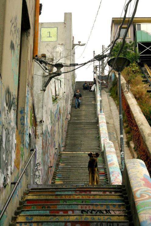 Hohe Treppen und davon viele im hügeligen Valparaiso