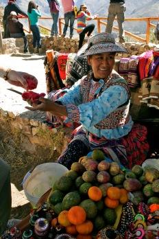 Wir kaufen Kaktus zum Knacken