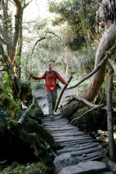 Inka Trail: Brücke