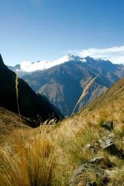 Inka Trail: Weg auf den Dead Woman's Pass