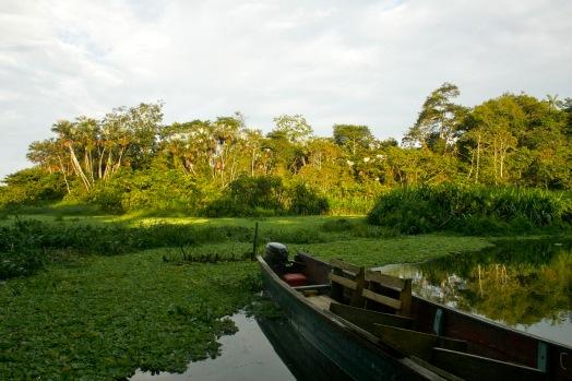 Ankunft im Dschungel in Ecuador