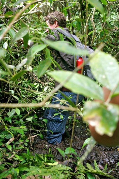 Schlammige Angelegenheit im Dschungel Ecuadors