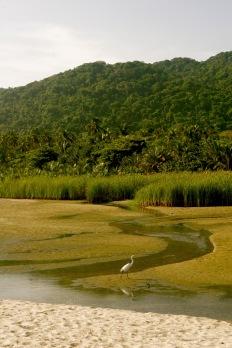 Tayrona Nationalpark: Morgenstunden