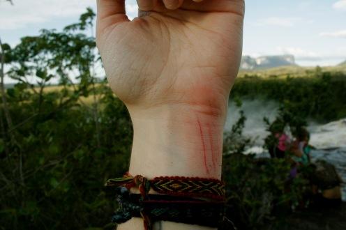 Canaima Nationalpark: Nahtoderfahrung