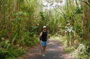 Wandern im Nationalpark Arenal bei La Fortuna