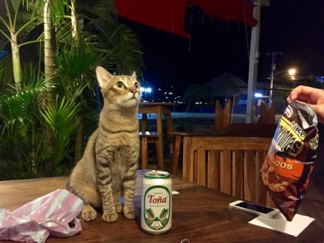 Unser neuer Freund in San Juan del Sur