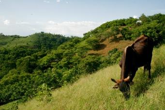 Wandern in El Salvador