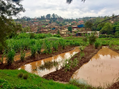 Die Hauptstadt Ruandas: Kigali