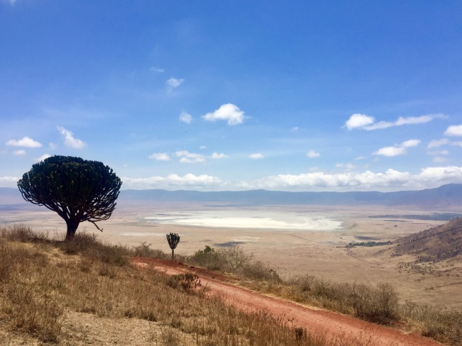 Ngorongoro Krater in all seiner Pracht