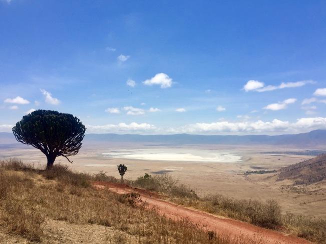 Ngorongoro Krater in all seiner Pracht