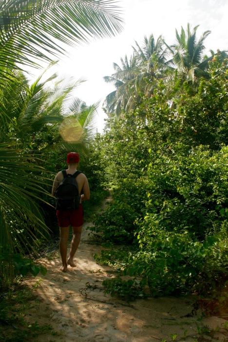 Weg zum Boca del Drago alias Playa Blanca