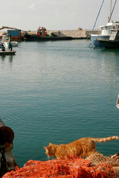 Hafenstadt Jaffa
