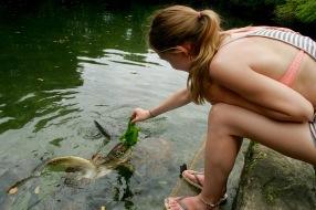 Mnarani Sea Turtle Conservation Center