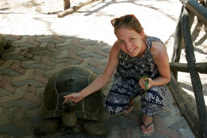 Grinsende Riesenschildkröte auf Prison Island