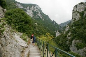 Wanderung durch den Olympus Nationalpark