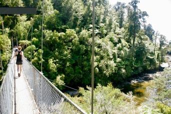 Hängebrücke im Abel Tasman