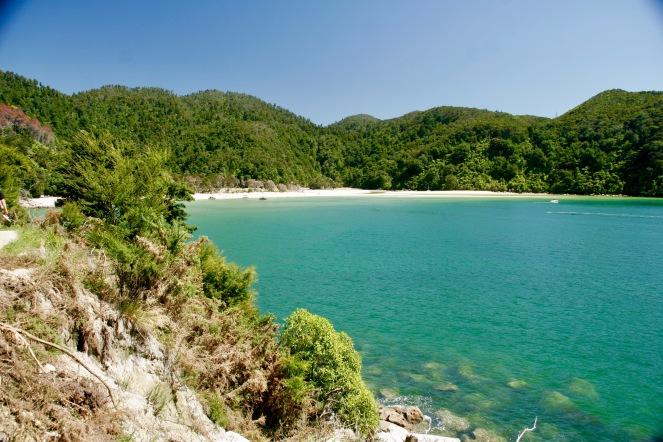 Eine der vielen Buchten im Abel Tasman