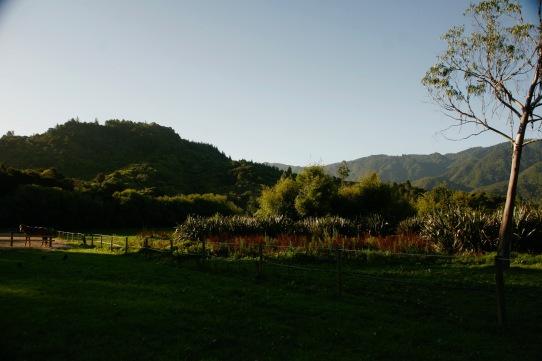 Unser einsamer Campingspot im Abel Tasman