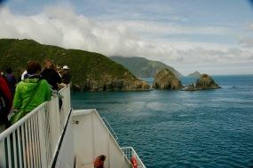 Wunderschöne Fahrt von Wellington zu den Marlborough Sounds