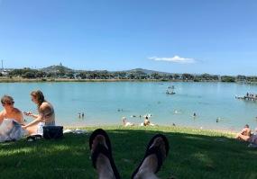 Strand am Parnell Rose Garden in Auckland