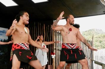 Typischer verrückter Tanz der Maori