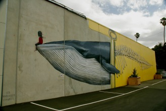 Street Art in Napier 2