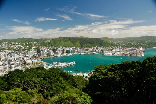 Blick über die Bucht von Wellington vom Victoria Peak