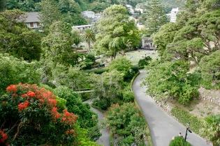 Botanische Gärten in Wellington