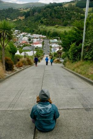 Baldwin Street in Dunedin