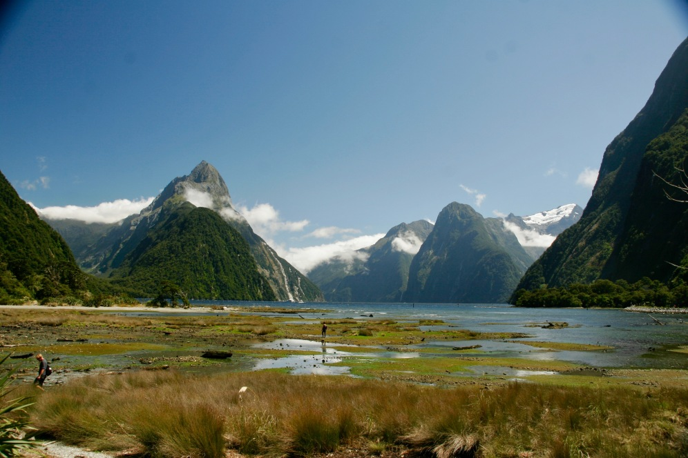 Milford Sound in voller Pracht