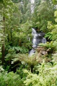 Großer Wasserfall im Otway Nationalpark