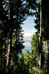 Tikitrail zum Bobs Peak