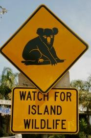 Erste Hinweise auf die Einwohner der Insel