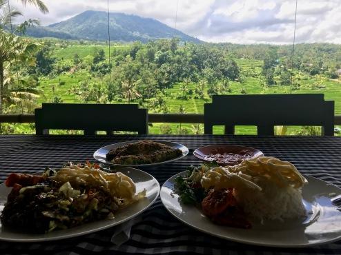 Padi Bali Warung bei den Jatiluwih Reisterrassen