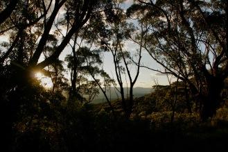 Wunderschöner Abend in den Blue Mountains