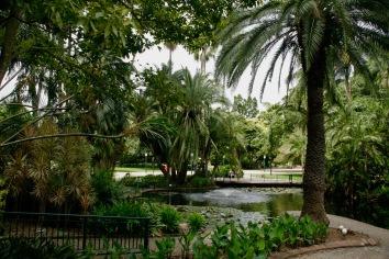 Botanischer Garten in Brisbane