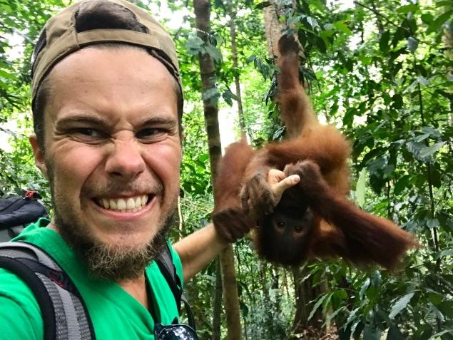 Liebe auf den ersten Blick im Dschungel