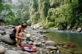 Tea time im Dschungel