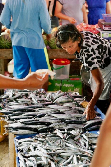 Fisch auf dem Corella Markt