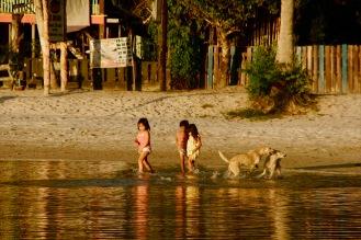 Kinder und Hunde spielen am Strand in Port Barton