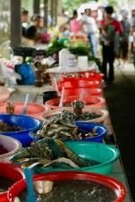 Komisch aussehender Fisch auf dem Markt