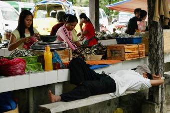 Schlafender Mann auf dem Corella Markt