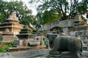 Anlage rund um den Pashupatinath Tempel