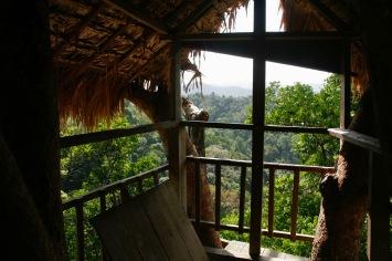 Ausblick über den Dschungel vom Dachgeschoss